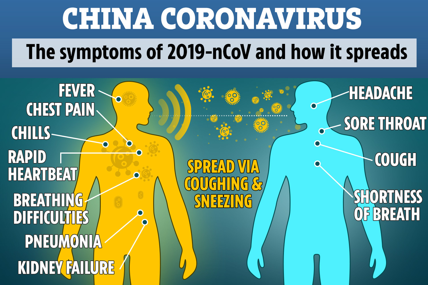 Image Result For How Did The Coronavirus Start